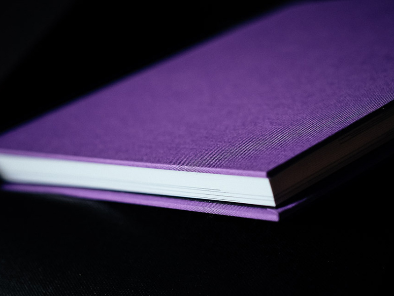 Fine Art Purple Wedding Album